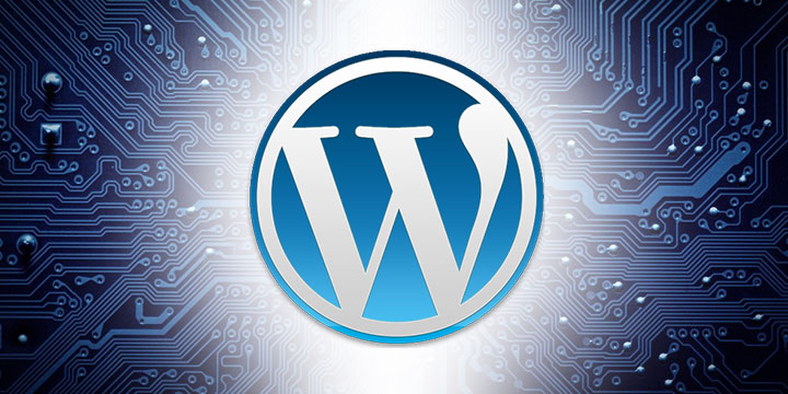 Internet Domain WordPress Hosting You Can Count On