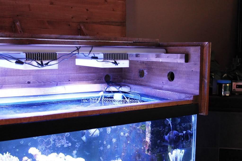 Different Kinds of Aquarium tank Lights